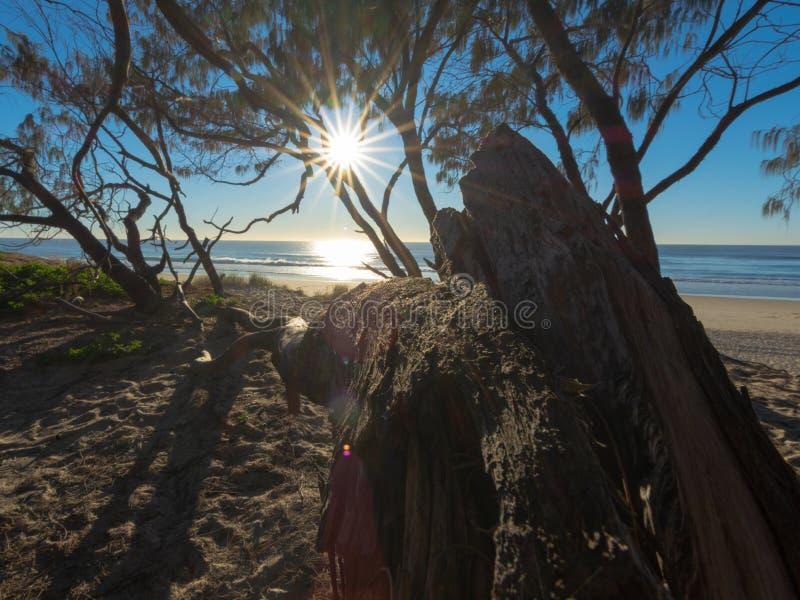 Восходящая вспышка на Золотом побережье стоковое изображение