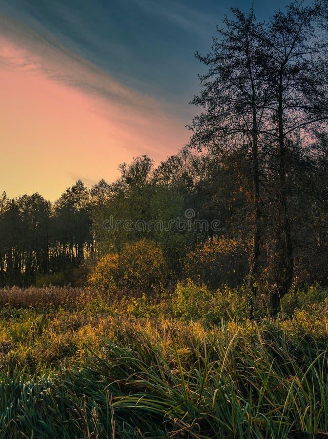 Восход на реке стоковые изображения