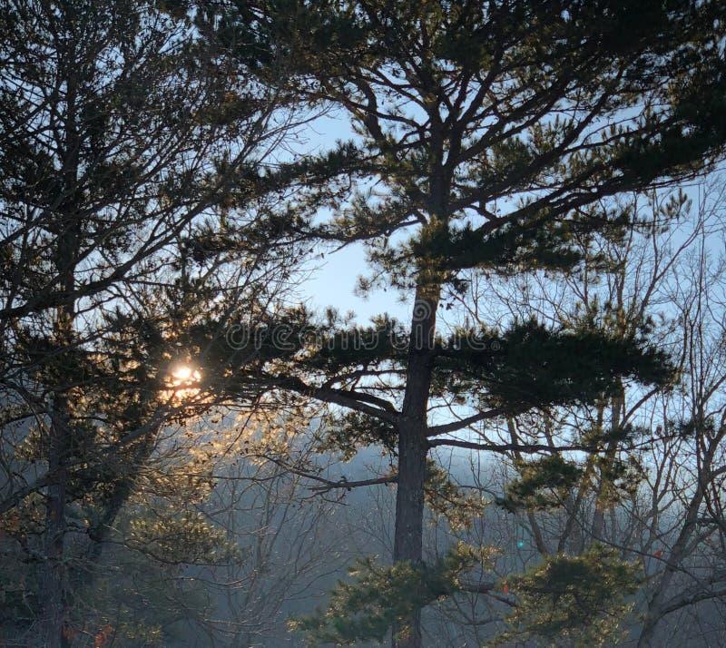 Восход солнца весны над горой в Аппалач стоковые фотографии rf