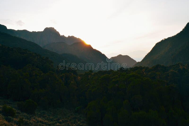 Восход солнца в горах Rwenzori стоковое изображение