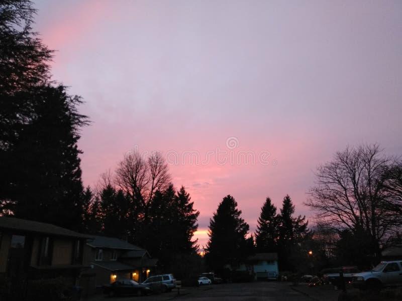 Восход солнца в декабре стоковое фото