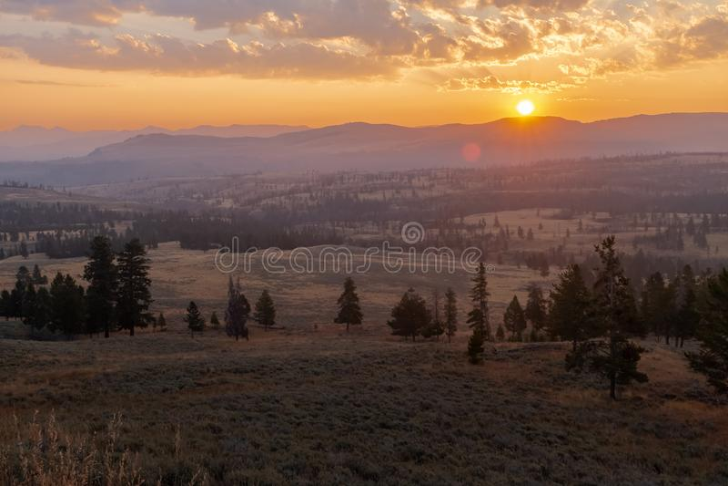 Восход солнца в национальном парке Йеллоустон, солнце поднимает над холмами и покрывает луг в золотом свете стоковые изображения rf