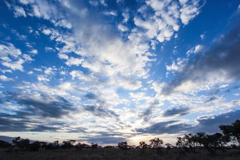 Восход солнца в Amboseli стоковые фото