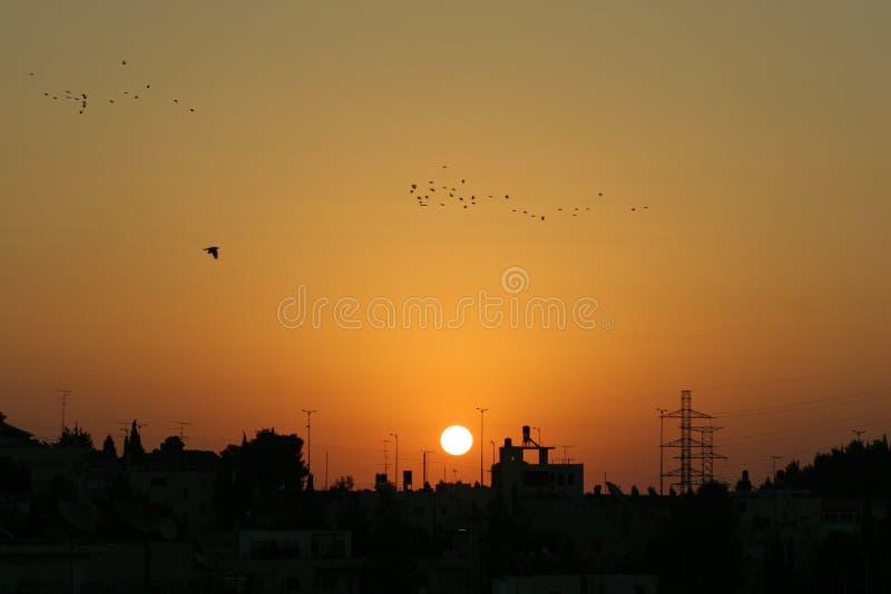 восход солнца Иерусалима стоковые фото