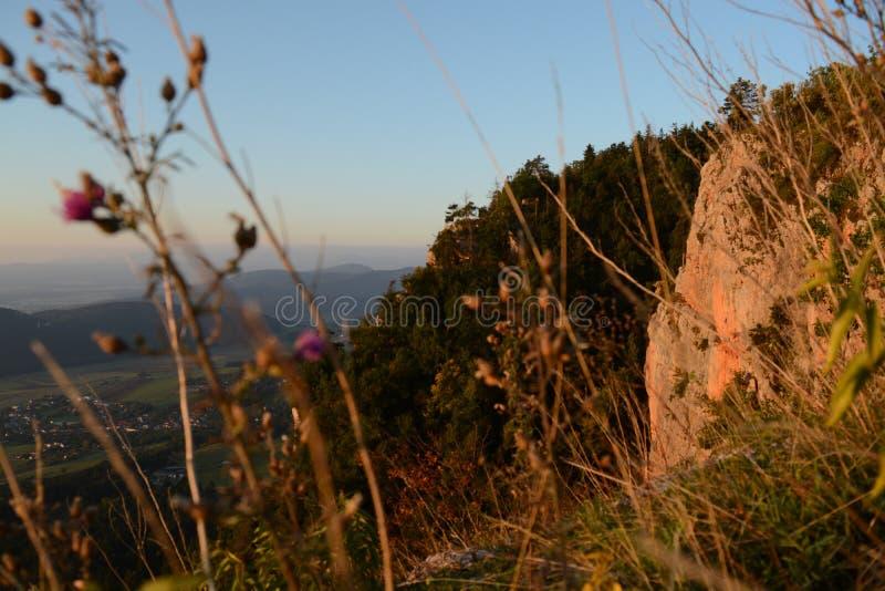 Восход солнца и ландшафт стоковые фото