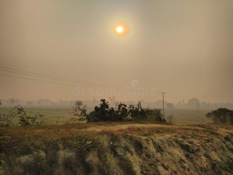 Восход солнца над аграрным полем стоковая фотография rf