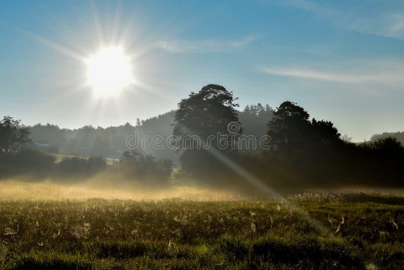 Восход солнца над датским лугом! стоковая фотография