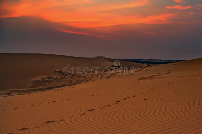 Восход солнца над песчанной дюной стоковые изображения rf