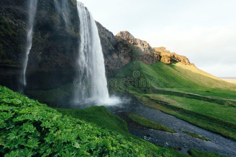 Восход солнца на водопаде Seljalandfoss стоковые изображения rf