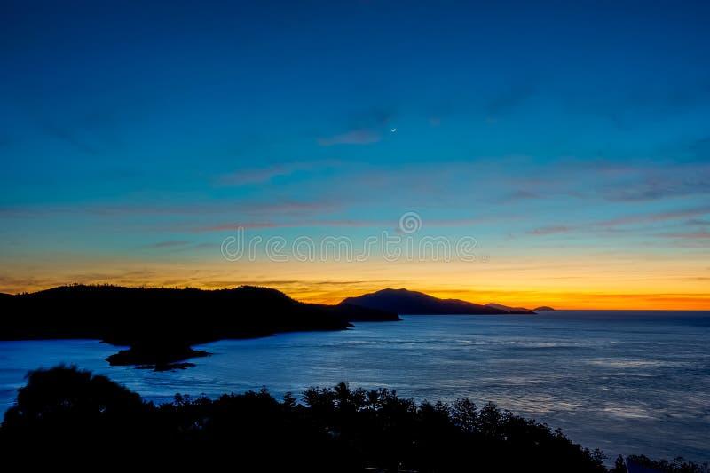 Восход солнца от одного холма дерева, острова Гамильтона, Квинсленда, Австралии стоковые изображения rf