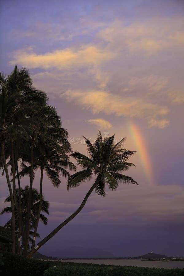 восход солнца радуги стоковое фото