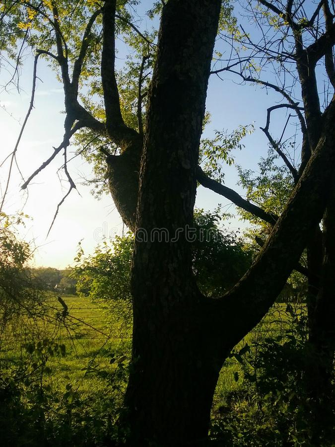 Восход солнца страны стоковое изображение