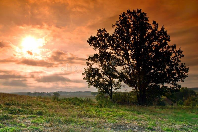 восход солнца страны стоковые фото