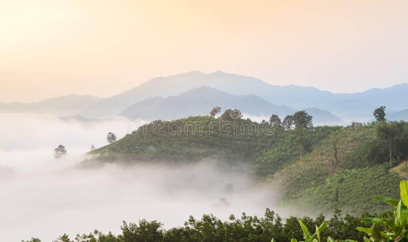 Восход солнца с морем тумана над Меконгом на точке зрения горы в провинции Nong Khai, Таиланде стоковая фотография