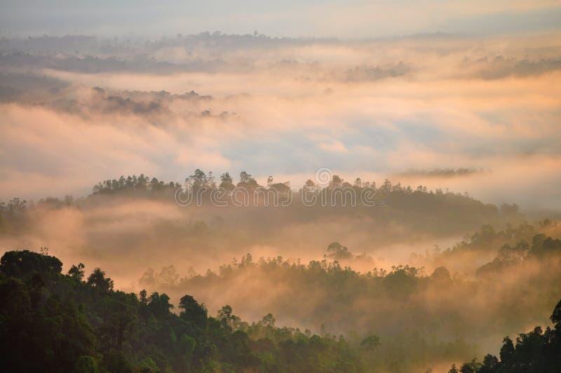 Восход солнца утра стоковое изображение rf