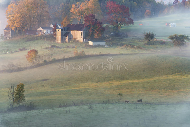 Восход солнца фермы стоковое фото rf
