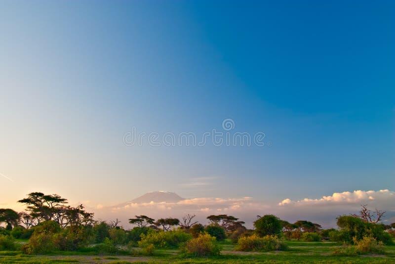 восход солнца kilimanjaro стоковое изображение rf