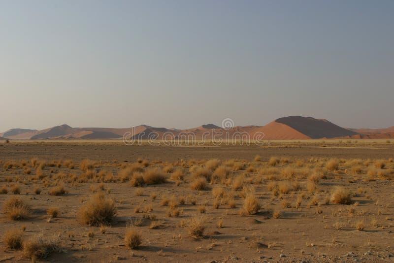 восход солнца namib пустыни стоковое фото