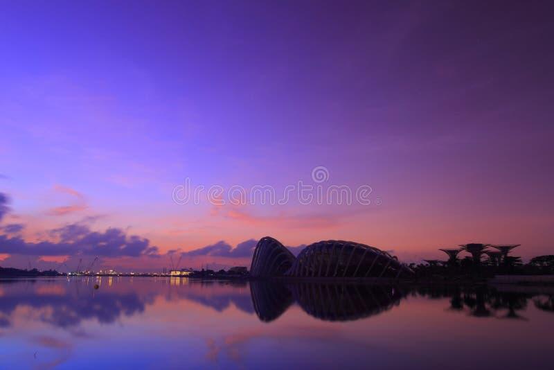 восход солнца singapore ботанического сада новый стоковые изображения