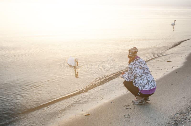 Восход солнца в природе Пляж моря и beatifull с девушкой Безмолвие Естественная предпосылка sunlight стоковое изображение