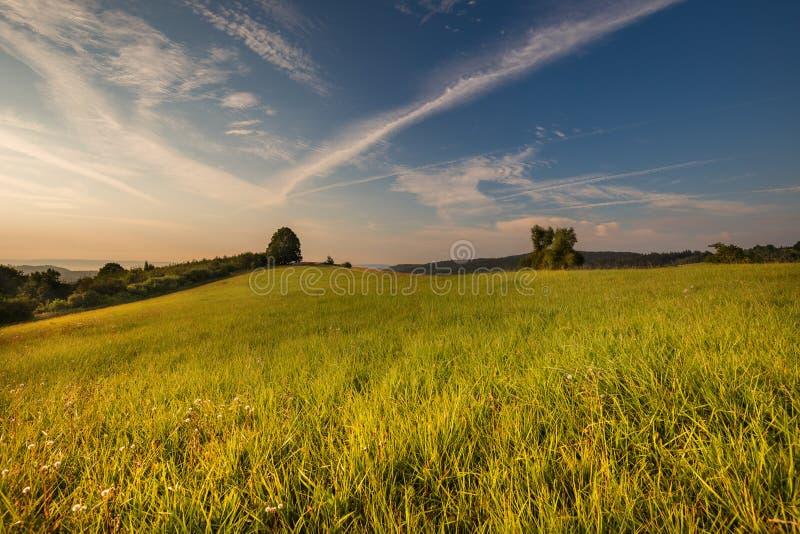 Восход солнца и зеленый луг стоковое изображение