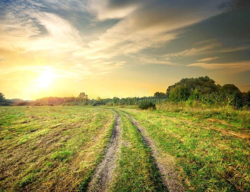 Восход солнца и дорога в поле стоковые фотографии rf