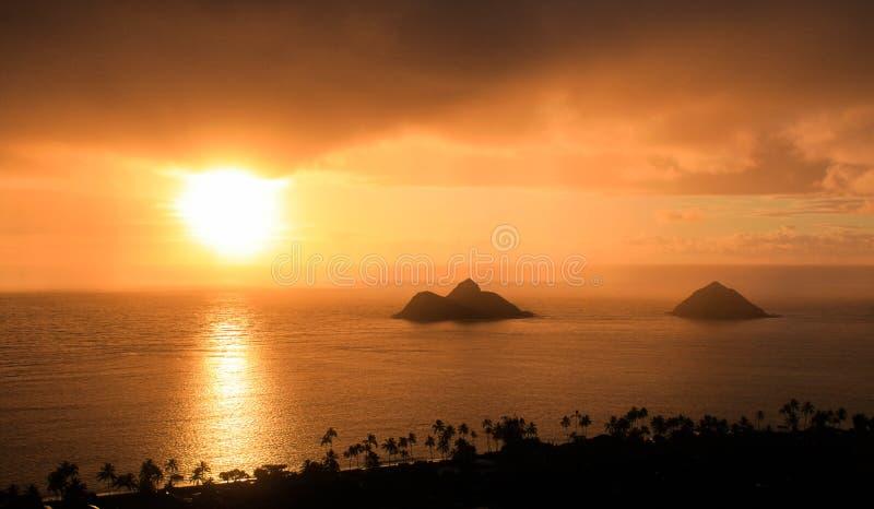 Восход солнца меда стоковое изображение rf