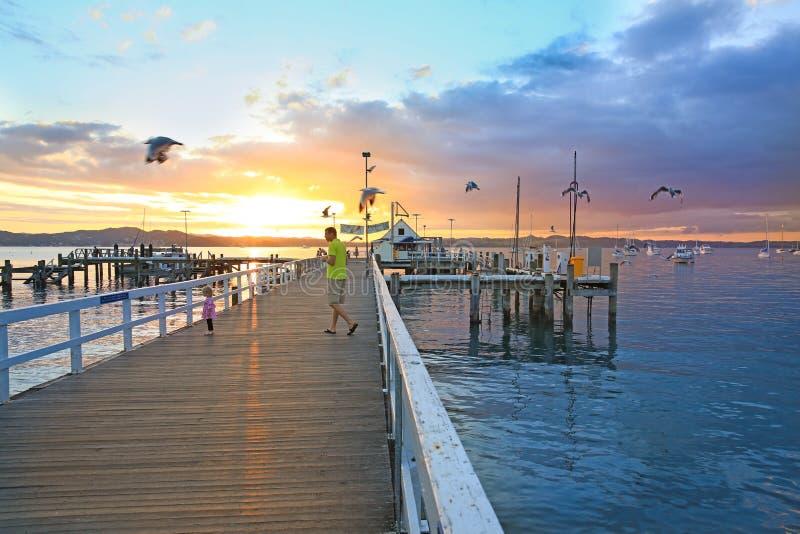 Восход солнца на заливе островов, северного острова, Новой Зеландии стоковые изображения