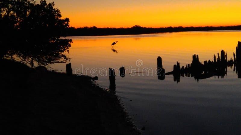 Восход солнца над индийским рекой стоковые фотографии rf