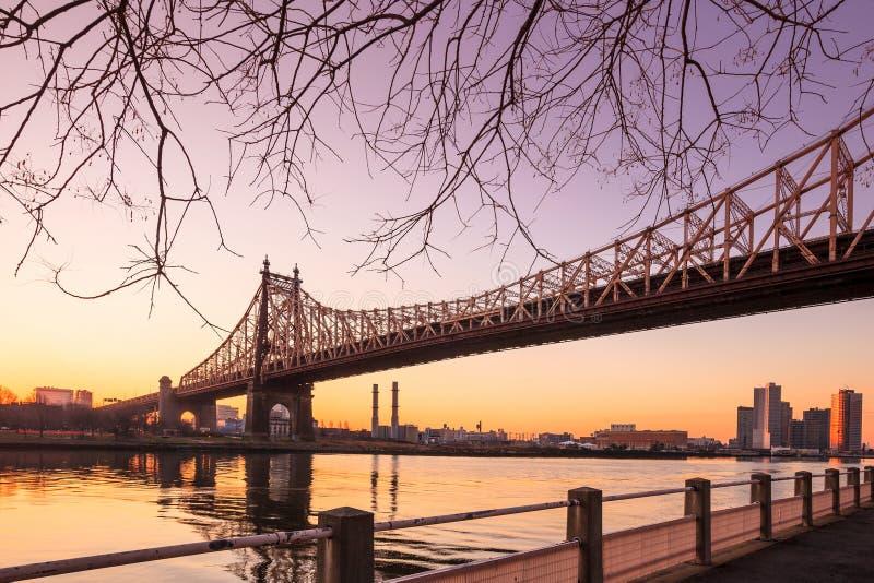 Восход солнца на мосте ферзя стоковые фото
