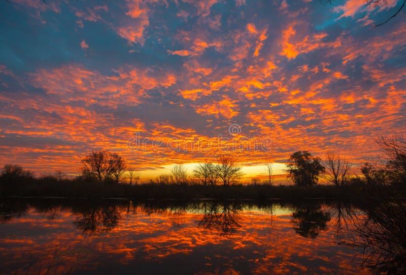 Восход солнца над озером с отражением чуть-чуть деревьев в воде стоковое изображение rf