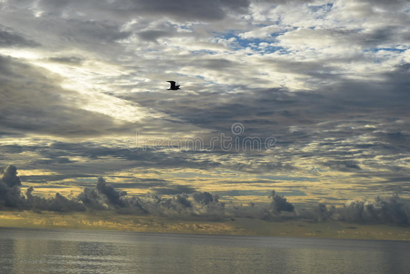 Восход солнца над океаном в Флориде стоковая фотография rf