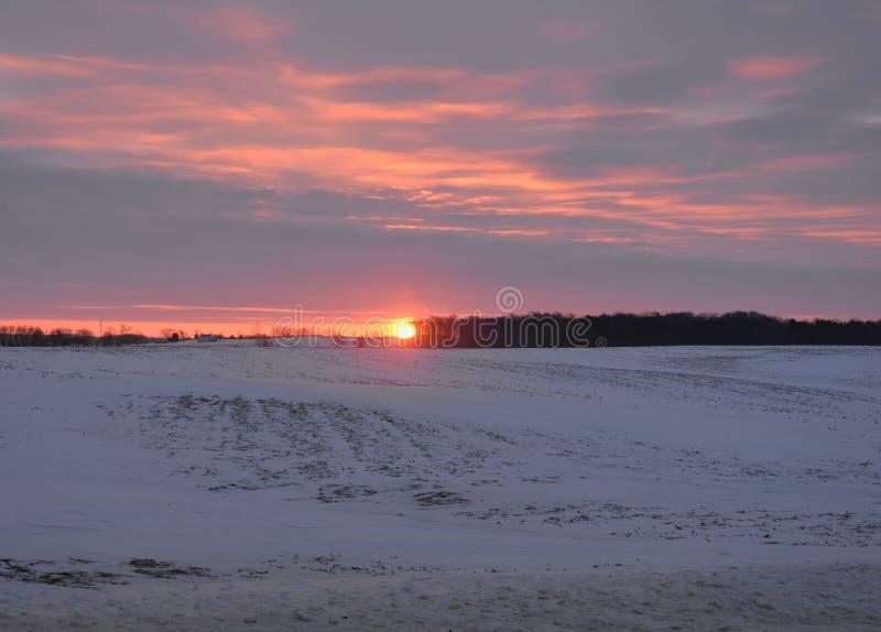 Восход солнца над полем в wintertime с снегом стоковые фотографии rf