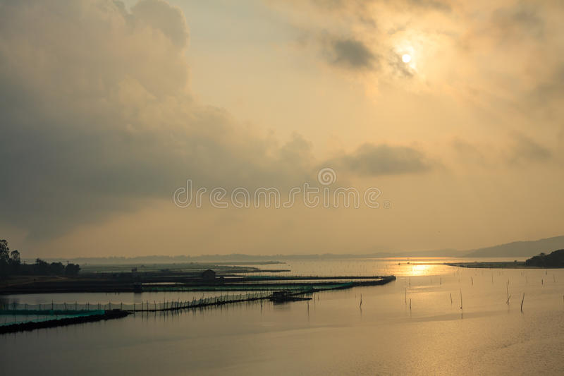 Восход солнца на пруде стоковая фотография rf