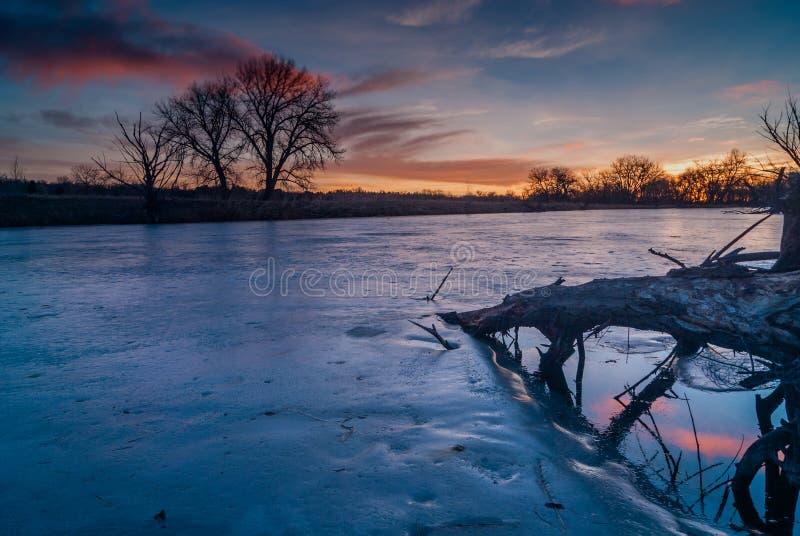 Восход солнца на пруде стоковое фото rf