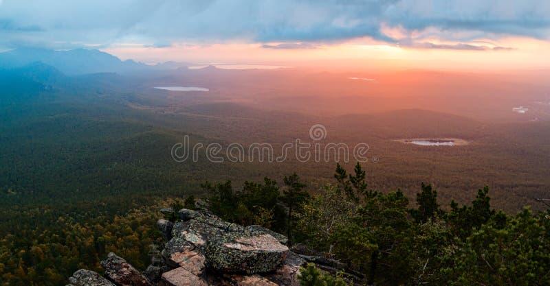 Восход солнца над сосновым лесом стоковое изображение