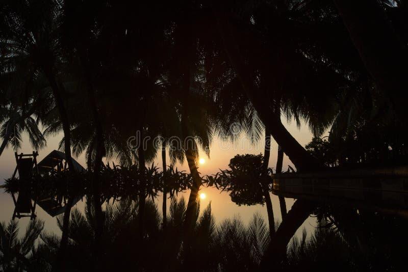 Восход солнца на тропическом острове стоковые фотографии rf