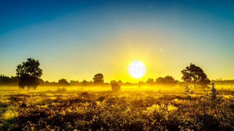 Восход солнца над туманом на Ermelose Heide стоковые фото