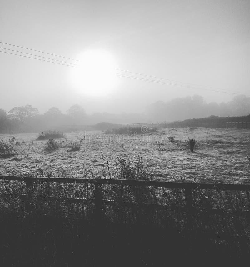 Восход солнца над paddock стоковые фото