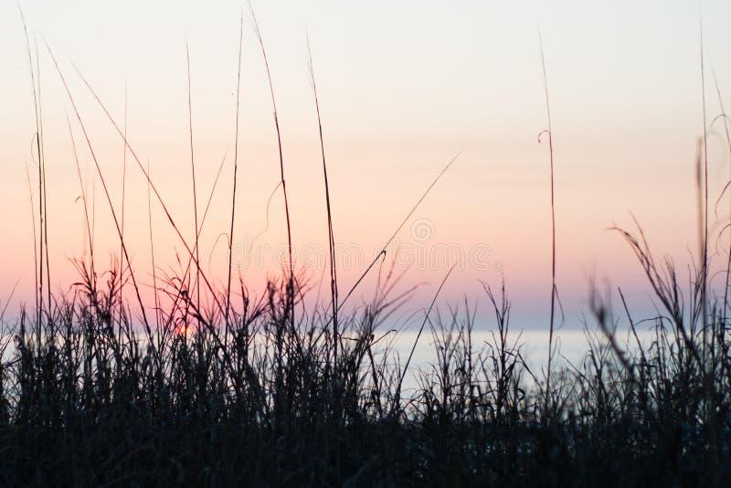 Восход солнца на Pawleys стоковая фотография