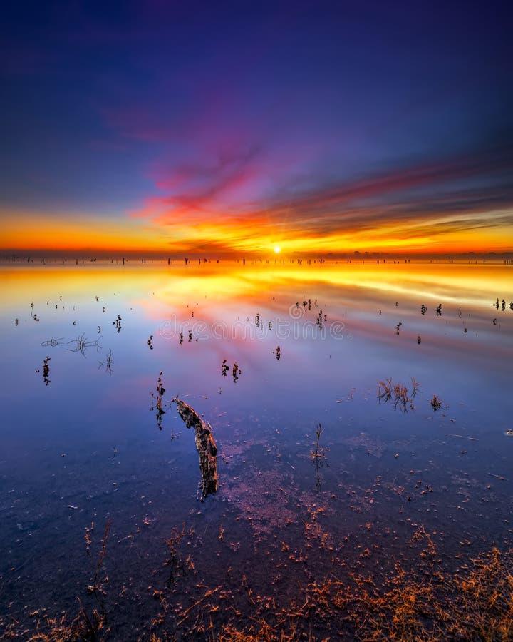 Восход солнца озера Техас стоковое изображение rf