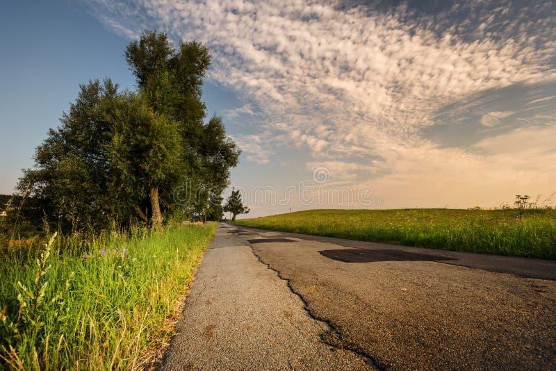 Восход солнца, дорога выровнялся с травой и деревьями стоковые изображения