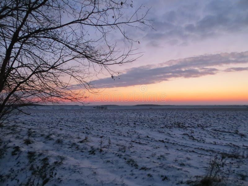 восход солнца России поля altai стоковое изображение