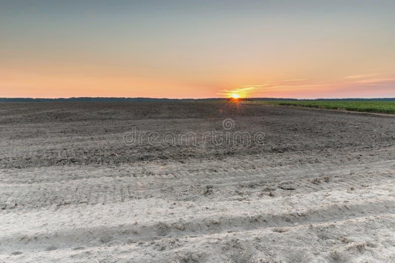 восход солнца России поля altai стоковые изображения