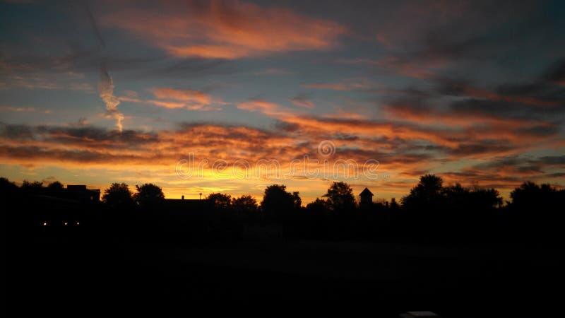 Восход солнца утра буйвола стоковая фотография rf