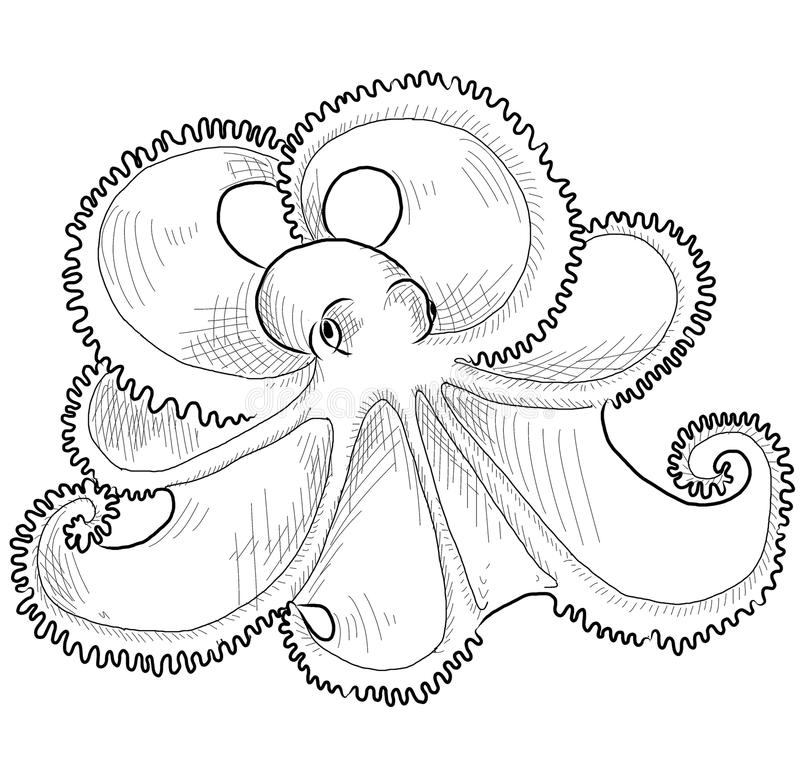 восьминог чертежа контура Стоковые Изображения RF