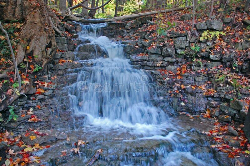 Download восьмые холмы Halton падения выравнивают воду Ontario Стоковое Изображение - изображение насчитывающей цветы, холмы: 6867637