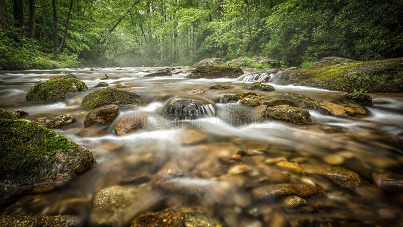 Вода бежать в заводи Северной Каролины стоковое изображение