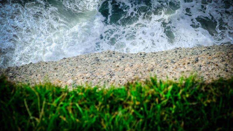Вода, земля и трава крупный план скалы стоковое изображение rf