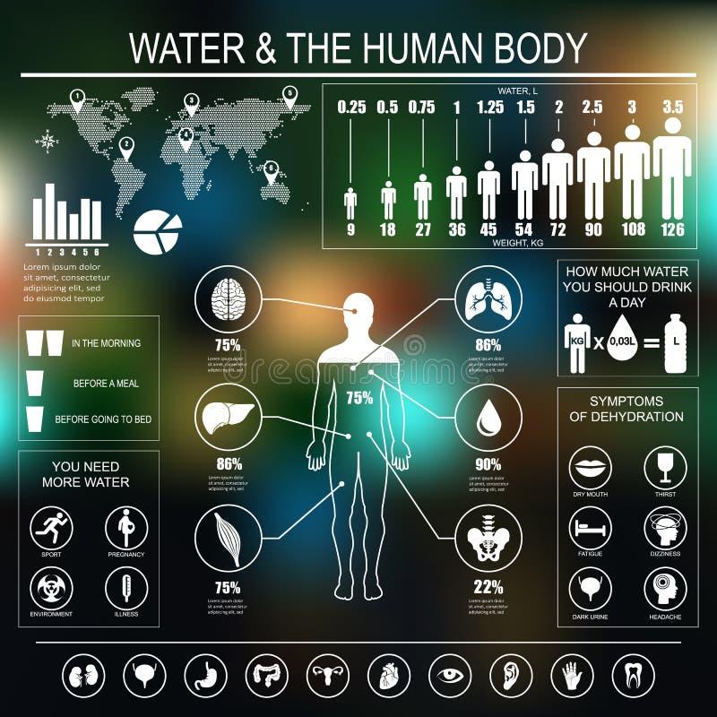 Вода и человеческое тело infographic на темной предпосылке бесплатная иллюстрация